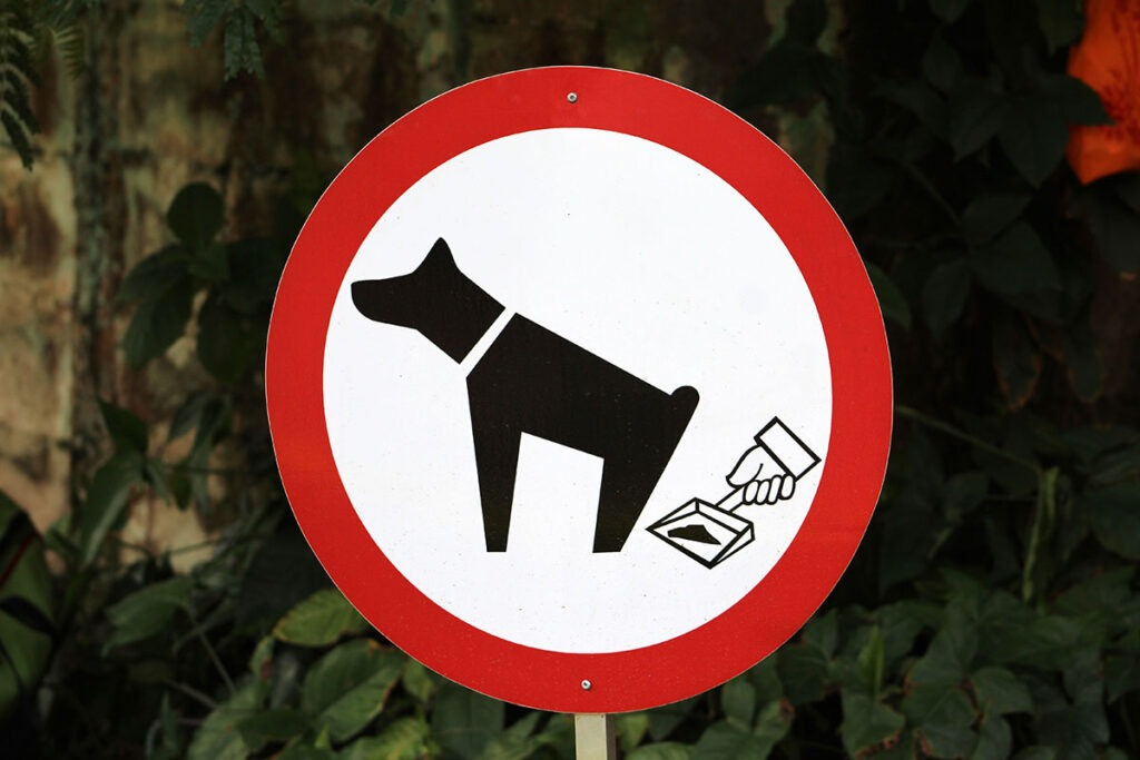 The Importance of Cleaning Up Your Dog's Waste